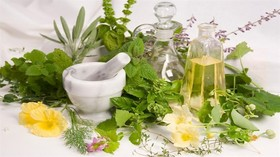 2nd Festival of Ecotourism & Herbal Plants/ Natanz, Isfahan