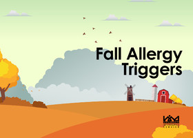Fall Allergy Triggers