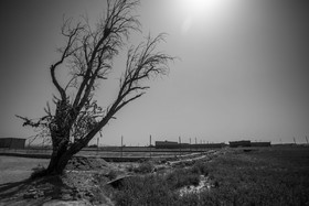National projects destroy Zayandeh-Rood River