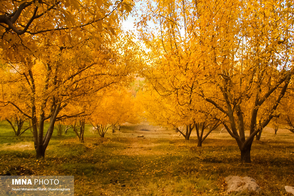 Discover fiery colors of Semirom in autumn