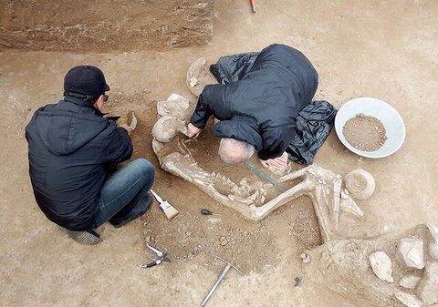 Ancient warrior's grave discovered in northern Iran