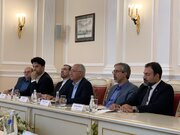 Isfahan's proposal on cooperation welcomed by St. Petersburg
