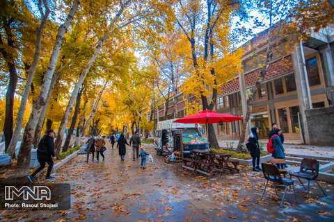 Autumn highlights in Isfahan
