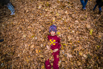 Autumn leaves festival in Isfahan