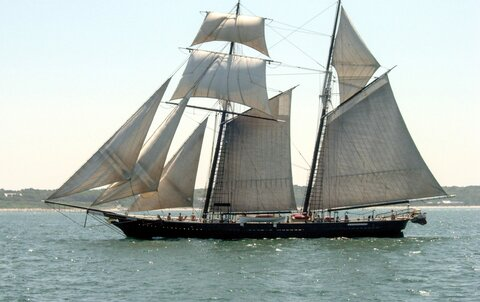 Traditional sailing revived in Iran
