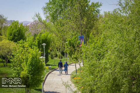 Spring waking up in Isfahan